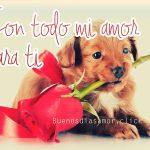 Imagen de cachorro con frase de amor