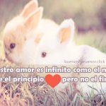 Imagenes de conejitos con frase de amor