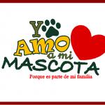 Imagenes de amor de Animales +Ositos,Perritos, Caballos